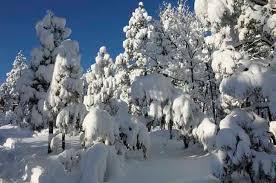 صور فصل الشتاء صور ثلوج
