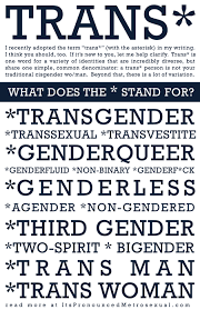 what does the asterisk in trans stand for