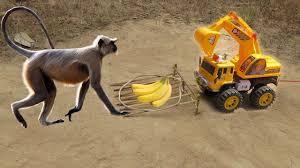 Easy Monkey trap technology make from <b>Plastic Excavator</b> Work 100 ...