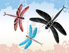 Doodle <b>sketch dragonfly</b>. Stylized animal insect for tattoo, <b>t</b>-shirt ...