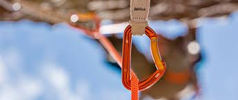 <b>Карабины PETZL</b> | Снаряжение для альпинизма и скалолазания ...