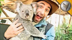 <b>Koala</b> Gives Stinky Hugs! - YouTube