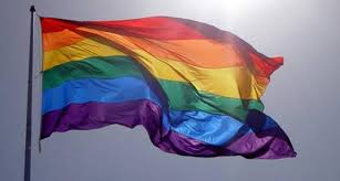 Image result for rainbow pride flag