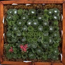 art green wall tabletop