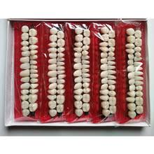 Buy <b>resin teeth</b> and get free shipping on AliExpress.com