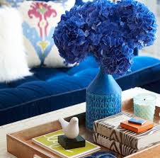 room cozy feng shui colors