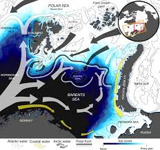 Polar cod <b>in</b> jeopardy under the retreating Arctic <b>sea</b> ice ...