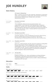 Vp Sales  amp  Marketing Resume Samples VisualCV