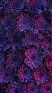 Nature wallpaper iPhone <b>flowers</b> | Nature wallpapers iPhone в 2019 ...