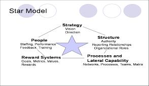 strategy sandeep silas star model