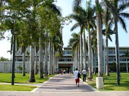 best images about education guide n the university of miami leonard m miller school of medicine an academic medical center founded in is proud to serve south florida south america and the