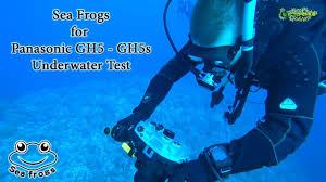 Подводный бокс Sea Frogs GH5 waterproof case после месяца ...