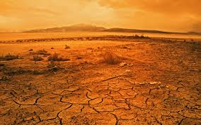 Image result for desert heat