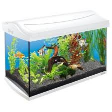 <b>Аквариумный комплекс Тетра</b> Aqua Art 60 л купить | Интернет ...