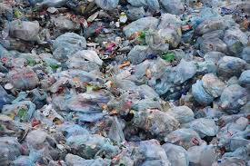 Spotlight on Greenwashing   Tarrytown Environmental Advisory ...
