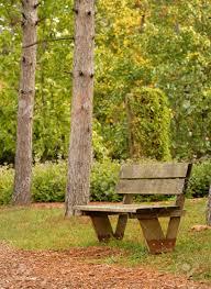 Afbeeldingsresultaat voor bankje in park