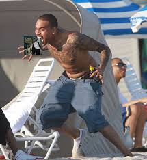 Chris Brown being attacked by a seagull : pics via Relatably.com
