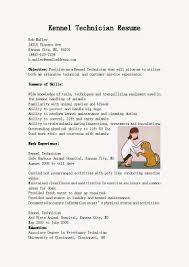 copywriting resume objective cto resume example technical resume writing examples technical trendresume resume styles and resume templates copywriter resume