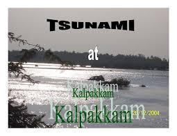 tsunami essaythe causes of tsunami essays