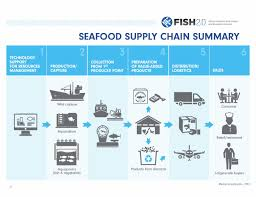 supply chains are key to change for sustainable fisheries and    fish   supply chain diagram