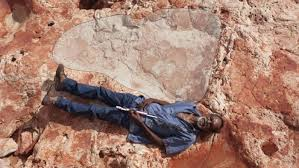 World's biggest <b>dinosaur</b> footprints found in north-western Australia ...