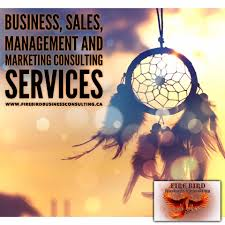 firebird business consulting blog site next level your company and your circumstances are these ideas really worth discussing or are they distractions most times someone s opinion does not take into