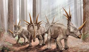 Image result for styracosaurus