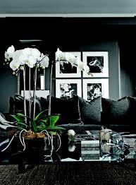 living room ideas for men 2 bedroom ideas mens living