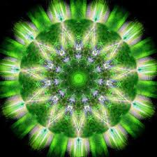 Image result for heart chakra
