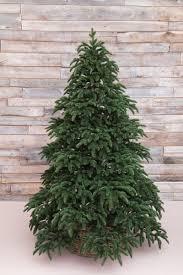 <b>Ель</b> Triumph Tree <b>Нормандия 100</b>% <b>Литая</b> Темно-Зеленая 230 см
