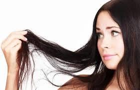 「pelo seco y quebradizo」的圖片搜尋結果