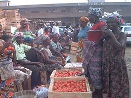 Image result for tomato post-harvest losses
