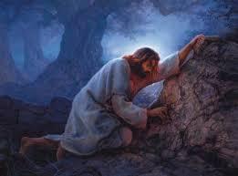 Image result for garden of gethsemane images