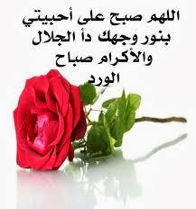 صباح الخير لكل الاحبة images?q=tbn:ANd9GcR