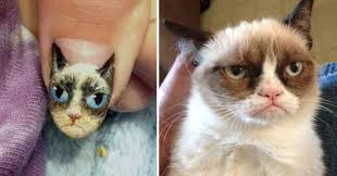 What's the Better Cat Meme: This Cat With Eyebrows or Grumpy Cat? via Relatably.com