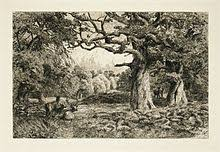 Image result for forest of arden shakespeare