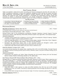 resume sample chief financial officer page 1 sample resume executive