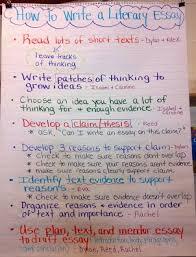 unit  baby literary essay   mrs dieringers rd grade website unit  baby literary essay