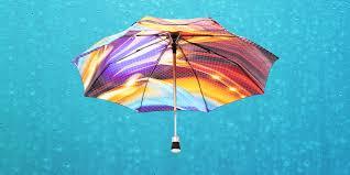 11 модных и красивых зонтов: для интровертов, парочек и ...