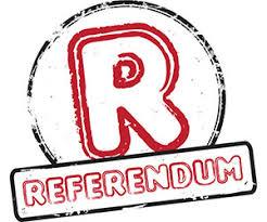 Risultati immagini per referendum