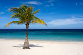 descriptive writing prompt deserted island