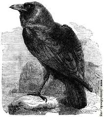 Image result for edgar allan poe' s death