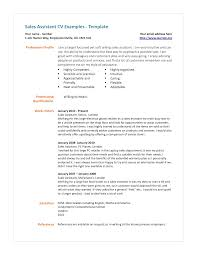 cv profile examples uk resume maker create professional resumes cv profile examples uk cv samples retail cv template s environment s assistant cv