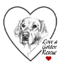 <b>Love</b> A <b>Golden</b> Rescue Home Page
