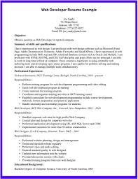 resume website examples getessay biz web developer resume example web developer resume example resume website