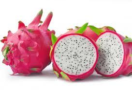 Risultati immagini per semini frutto piante grasse