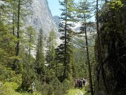bergfex sonnschienalm von wildalpen wanderung tour steiermark vorbei an hochschwabriese gr ebenstein