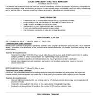 top  commercial real estate agent resume samples  real    others sample real estate resumes examples with expert with identifying and developing new markets  x    real estate agent resumes