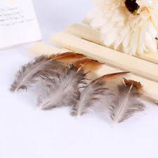 Chicken Craft Feathers <b>for</b> sale | eBay