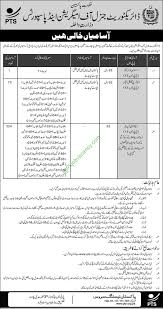 directorate general of immigration passports pts jobs directorate general of immigration passports 400 pts jobs application form